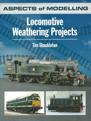 Aspects of Modelling Locomotive Weathering Projects